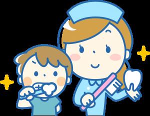 正しい歯の磨き方
